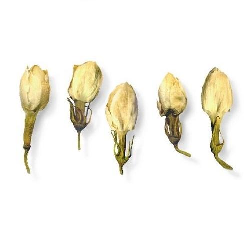 Чай Бриллиантовый Дракон Jasmine Flower Жасминовый бутон