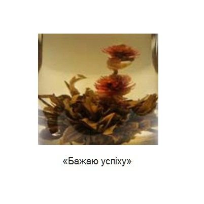 Чай T-MASTER Zhejiang Tea Желаю успеха, китайский, 50 г